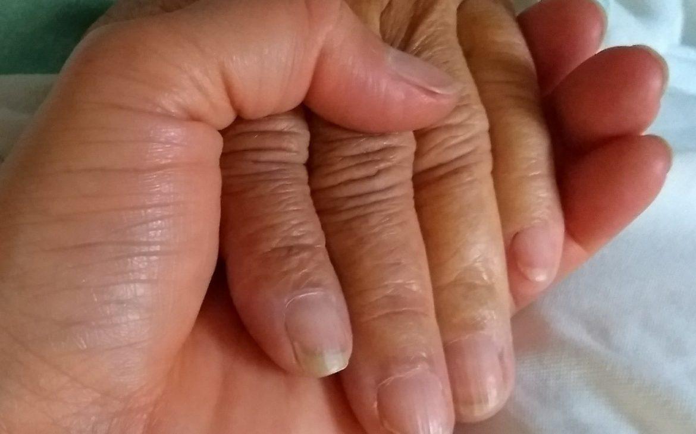 Manos de la abuela